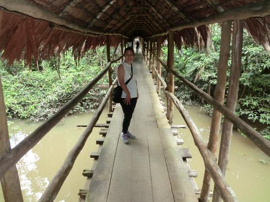 Amazon Explorama Lodges: Scenic walkway to rooms