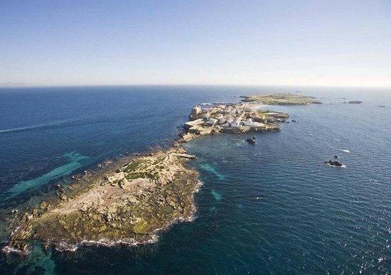 Santa Pola, إسبانيا: Nueva Tabarca (vista aérea desde el islote de La Cantera) 