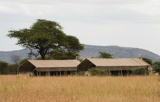 Ndutu Kati Kati - South Serengeti Safari Camp
