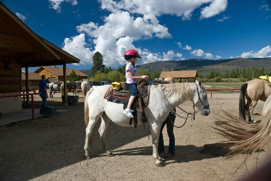 Winding River Resort Stables: Trail Ride