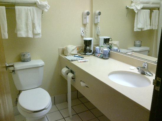 La Quinta Inn & Suites Boise Airport: bagno