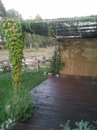 Agriturismo Borgo S.Maria di Vulci: tettoia del giardino