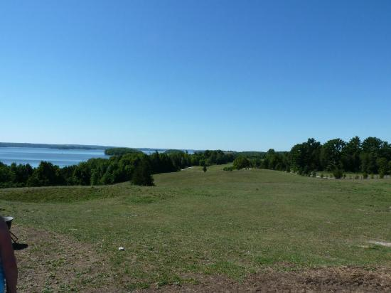Elmhirst's Resort: View from the barn