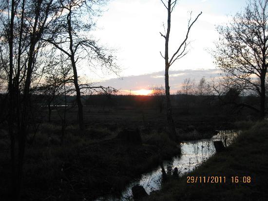 Fletcher Landhotel Bosrijk Roermond: Wel een prachtige omgeving om te wandelen.