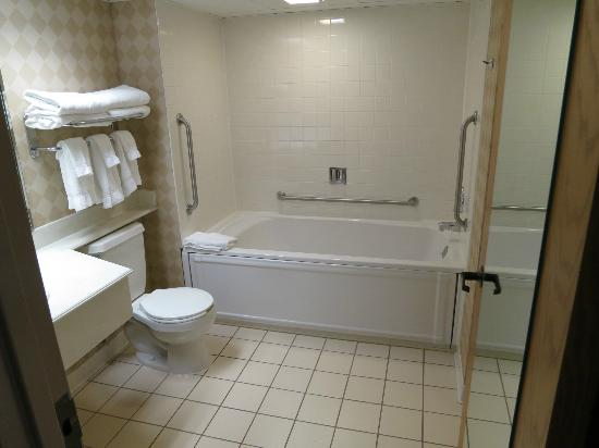 Holiday Inn Port Washington: Whirlpool tub