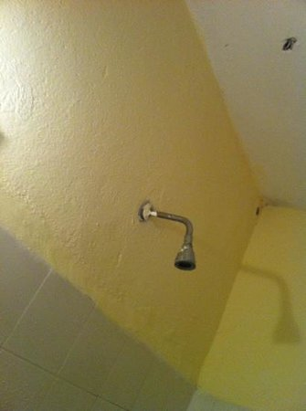 Eucalyptus Pension: cool shower