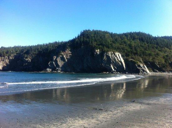 Salmon Cove Sands