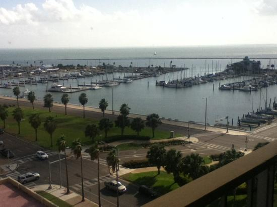 BEST WESTERN Corpus Christi: view from the breakfast room on 11th floor