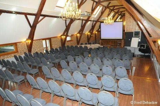 Le Domaine des Cigognes Hotel : Salon Séminaire