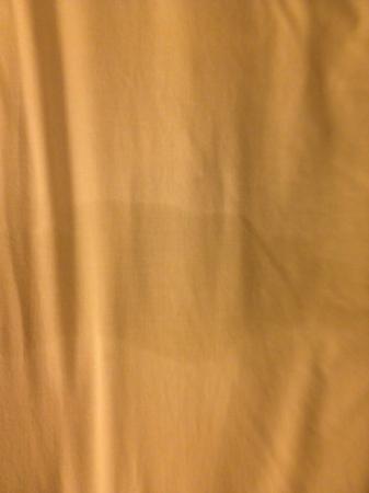 """هواليداي إن راليه داون تاون - كابيتال: wet stain in the """"clean"""" made bed """