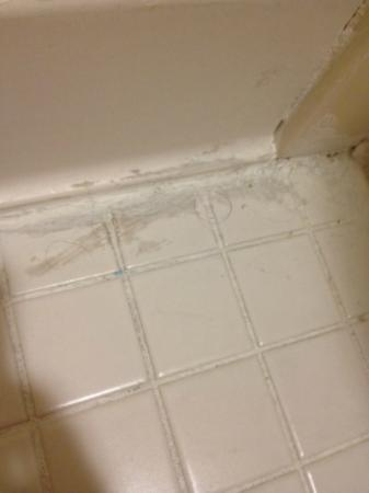 Holiday Inn Raleigh Downtown: hairs on the floor in the bathroom