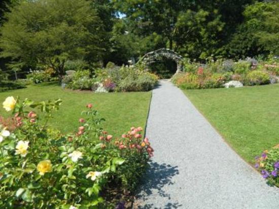 Rose garden picture of blithewold mansion gardens arboretum bristol tripadvisor for Blithewold mansion gardens arboretum