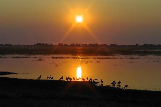 Muchenje Safari Lodge: Chobe Sunset