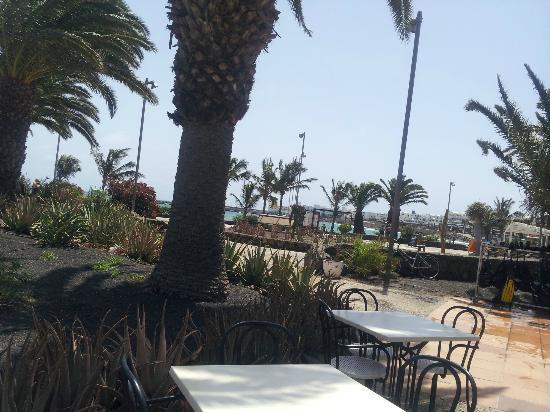 Surf Corner Cafe Bar: view