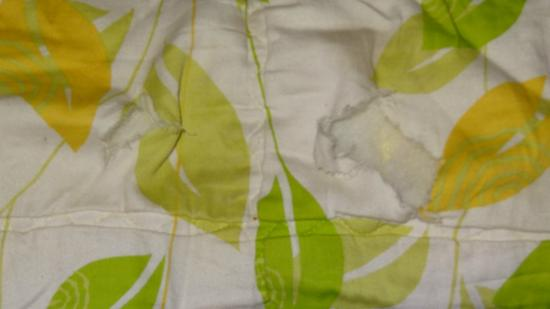 Nature Zone Resort: torn quilts n dirty bedsheets