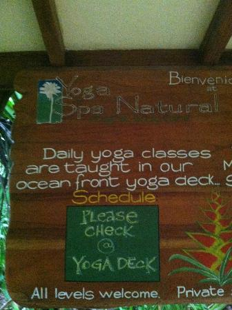 Hotel Tropico Latino: Daily Yoga Classes!
