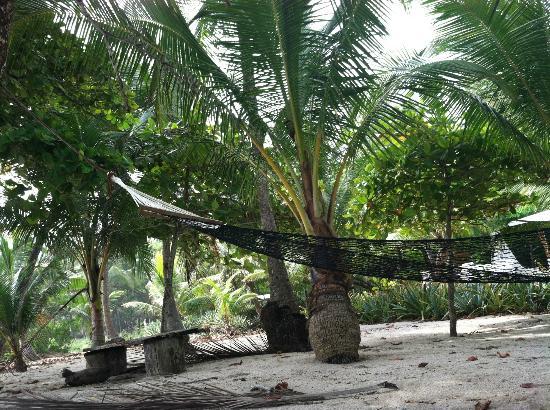 Hotel Tropico Latino: Hammock