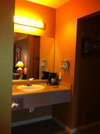 Headwaters Lodge & Cabins at Flagg Ranch: sink in room
