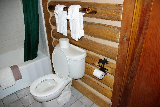 Signal Mountain Lodge: Bathroom picture for reference