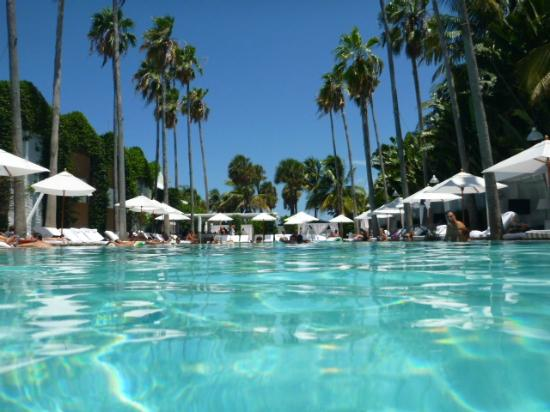 Delano South Beach Hotel: W.O.W.