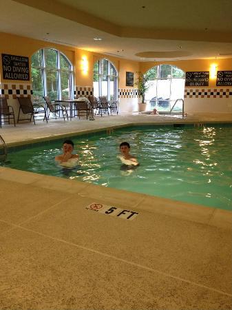 Hampton Inn & Suites Florence-North/I-95 : Indoor pool