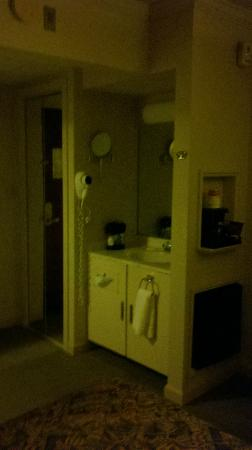 Ramada Lewiston Hotel & Conference Center: sink outside toilet/shower area & fridge/micro cubbies
