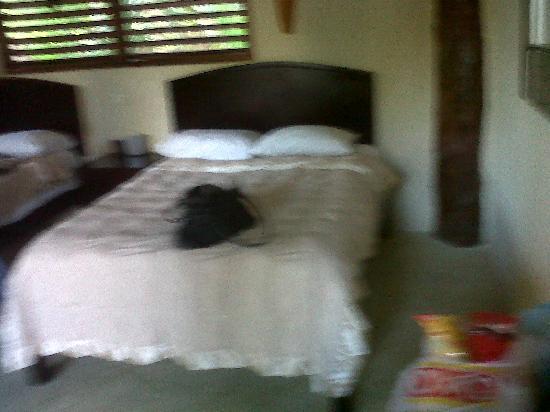 Hip Hotel Tulum: Las camas, colchones nuevos muy comodos!!!