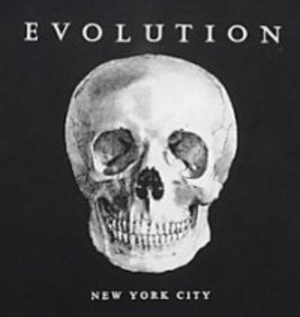 The Evolution Store: Logo
