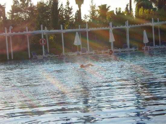 The olympic pool- all mine!