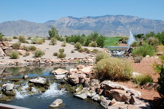 Sandia Resort & Casino: Landscaping