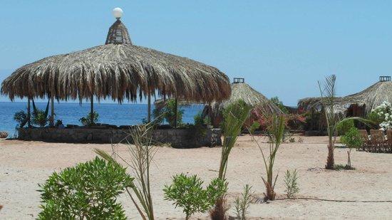 نويبع, مصر: Lounge restaurant Negma Bedouia / Bedouin Star
