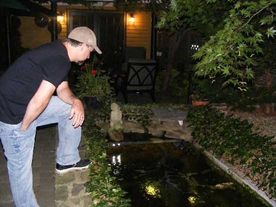Victorian Ladies Inn: Hubby loving the Koi fish.**SO CUTE!!**