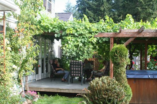 All Seasons Roost: The back yard grape arbor and spa.
