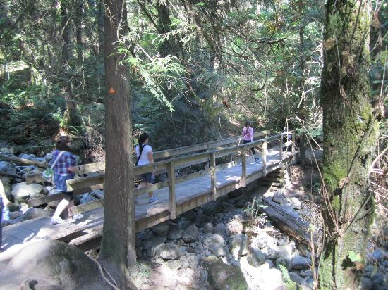 Baden-Powell Trail: you can rest on the bridges