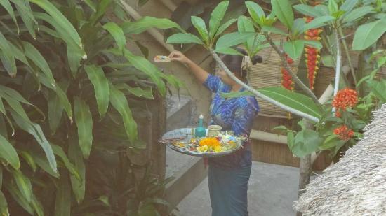 Alam Indah: le offerte del mattino