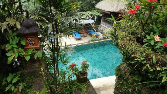 Alam Indah: la piscina