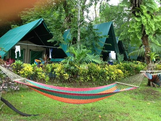 Corcovado Adventures Tent Camp : The Tent Cabins - Awesome!