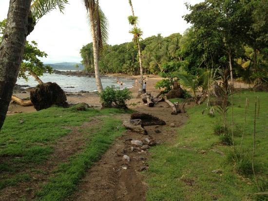 Corcovado Adventures Tent Camp : The Landing Bay and the coastal path