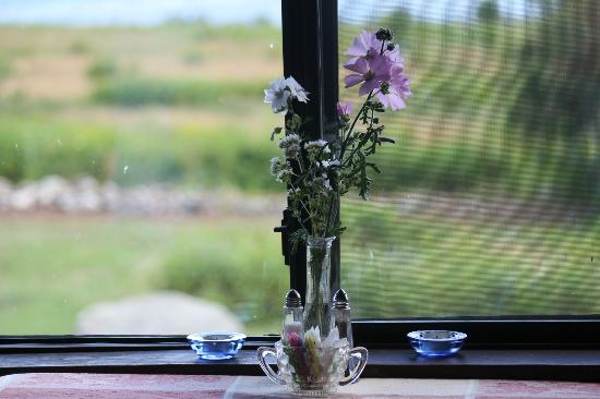 Lookout Inn: Wild flowers at the breakfast table.