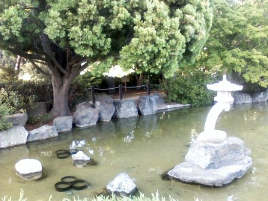 Elegant Japanese Friendship Garden