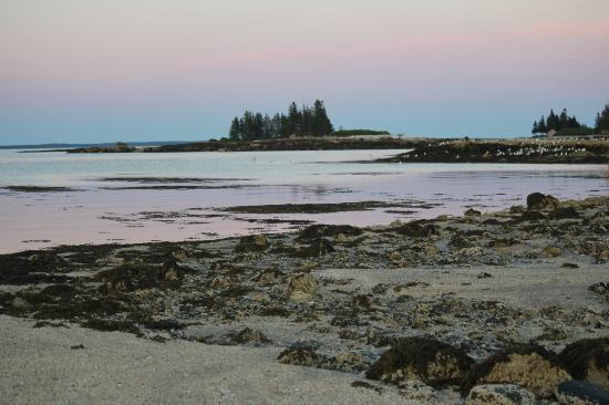 Lookout Inn: Walking the Maine shoreline 