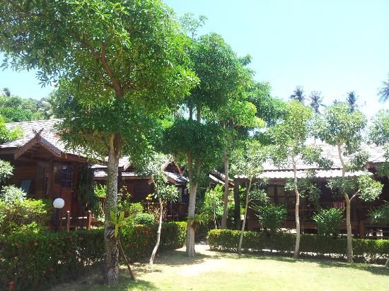 Haadsalad Resort: bungalows