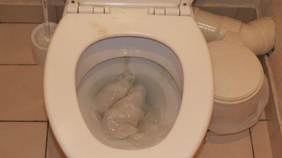 Hotel le Maupassant: wc