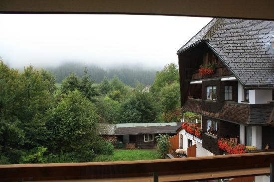 Hotel Schlehdorn: view from balcony