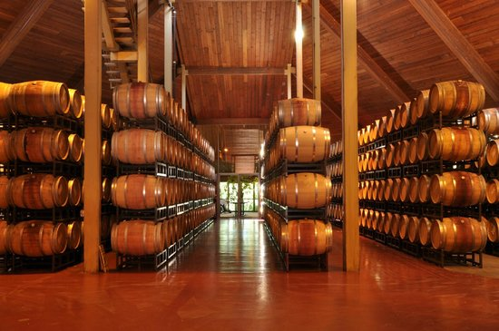 Chappellet: Inside the winery's barrel room