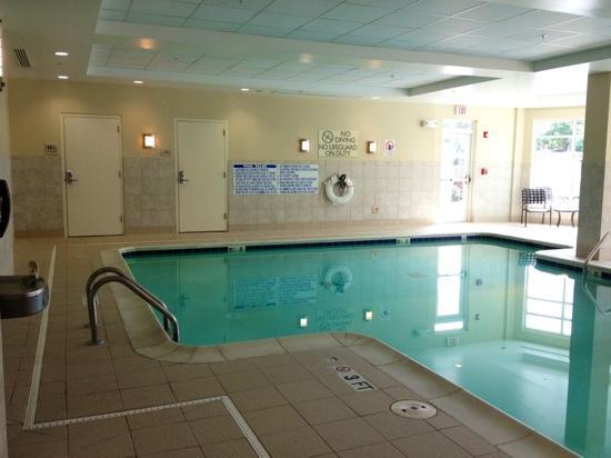Hilton Garden Inn Atlanta Airport North: indoor pool