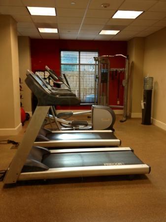 Hilton Garden Inn Atlanta Airport North: fitness room