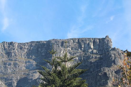 Abbey Manor Luxury Guesthouse: Perfect View of Table Mountain