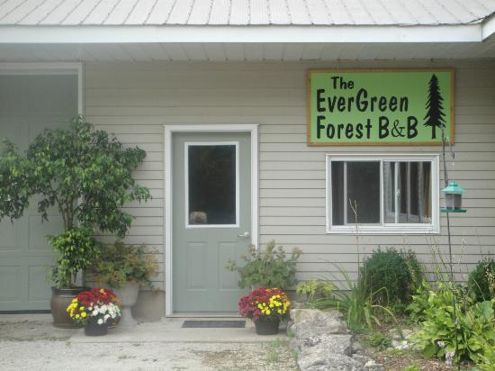 ‪‪Evergreen Forest B&B‬: B&B Entrance‬