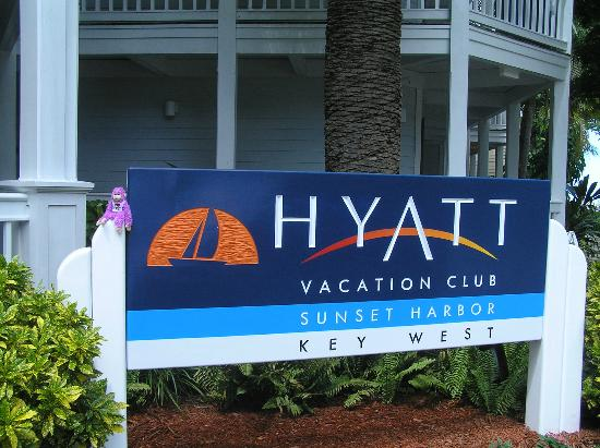 Hyatt Sunset Harbor Resort: Outside the Lobby